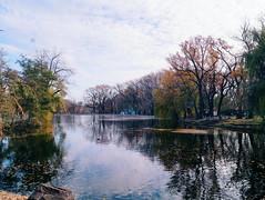 2015-11-10 07.26.58 1 (anastasiya_klenyaeva) Tags: trees sky nature russia autmn     saratov vsco vscocam vscorussia vscosaratov