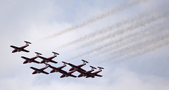 snowbirds (thatgirlwiththekicks) Tags: ontario canada airplane air jets canadian airshow planes shooter stthomas snowbirds saintthomas rcaf canadair royalcanadianairforce