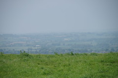 Mist on the land (Lil Shepherd) Tags: somerset landscape cadbury hillfort