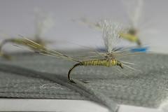 BWO #16 (Masi Hast) Tags: flyfishing flytying dryfly