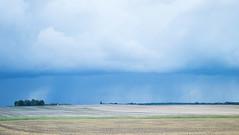 Just before the rain (yellowgreywolf) Tags: field rain yellowgreywolf nordicbluecoldlight