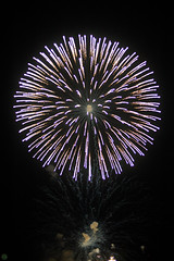 20160604-DS7_5459.jpg (d3_plus) Tags: street sea sky food festival japan port 50mm drive nikon scenery nightshot stage traditional firework  nightview nikkor  shizuoka   touring  izu  50mmf14       fishingport  inatori 50mmf14d   nikkor50mmf14  zoomlense     afnikkor50mmf14 nikon1 50mmf14s d700 nikond700 aiafnikkor50mmf14 nikonaiafnikkor50mmf14