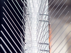 Sting (Lukinator) Tags: dusty metal grey iron sting grau finepix rod fujifilm nah dust simple stab makro metall spitz pointed silber eisen spitze staub hs20 makros stachel simpel nahe staubig metallisch