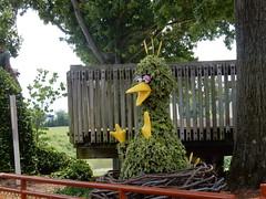 big bird topiary (pompomflipflop) Tags: sesameplace bigbird sesamestreet