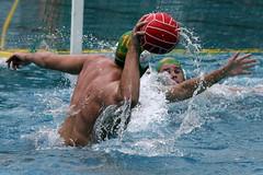 AW3Z1038_R.Varadi_R.Varadi (Robi33) Tags: summer men sports water swimming ball fight action basel swimmingpool watersports waterpolo sportspool waterpolochampionship