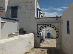 Sidi Bou Said (  ) (twiga_swala) Tags: tunisian architecture tunis traditional white blue cyan doors windows vernacular vernaculaire traditionnelle tunisienne sidi bou said tunisia tnez bouganvilla      portes grilles grills forge wrought iron ironwork bougainvillea fer forg moucharabieh mashrabiya   shanasheel oriel   ferronnerie blanc bleu bleute style andalous andalousian andalusian andalusi