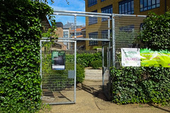 Tate Modern Community Garden-1 (Out To The Streets) Tags: door green london leaves wire gate shrubbery hedges opengardens ogsw tatemoderncommunitygarden opengardens2014 ogsw2014