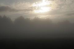 Sonnenaufgang in der Ossenvenne; Norderstapel, Stapelholm (9) (Chironius) Tags: stapelholm norderstapel schleswigholstein deutschland germany allemagne alemania germania    ogie pomie szlezwigholsztyn niemcy pomienie morgendmmerung sonnenaufgang morgengrauen  morgen morning dawn sunrise matin aube mattina alba ochtend dageraad zonsopgang   amanecer morgens dmmerung nebel fog brouillard niebla