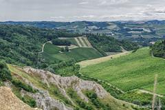 Romagnas hills and badlands. (Ciminus) Tags: italy nature landscape countryside nikon vineyards badlands vigneti naturesubjects nikond810 emiliaromagnaregion calanchiacquiferi afsnikkor70200f28edvrii ciminodelbufalo romagnassmoothhills romagnaland
