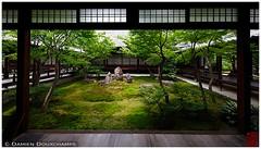 Inner garden, Kennin-ji temple, Kyoto (Damien Douxchamps) Tags: japan garden temple japanesegarden moss kyoto    kansai japon   kinki higashiyama        keninji