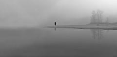 Au milieu de nulle part, est-on mieux qu'ailleurs ? (Thierry.Vaye) Tags: blackwhite solitude fuji sable arbre plage brume minimalisme xm1