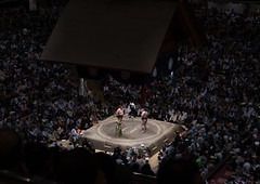 Overview image of the interior of the ryogoku kokugikan sumo arena during the sumo tournament, Kanto region, Tokyo, Japan (Eric Lafforgue) Tags: people male men sport japan horizontal asian japanese tokyo big fight asia fighter view martial stadium wrestling fat traditional crowd champion culture competition wideangle clash ring arena indoors upper tournament ritual leisure sumo inside strength tradition fullframe spectators athlete wrestlers groupofpeople adultsonly cultural overview overweight ryogoku kokugikan competitors kantoregion 9people mixedagerange colourpicture 2029years japan161074