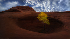 Alone (Mark Metternich) Tags: color fall utah sand sandstone solitude tour desert sony surreal workshop tours workshops a7r surrealscape markmetternich markmetternichcom