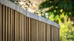 Wooden Fence (Theen ...) Tags: adelaide bokeh fence foliage green happyfencefriday hff high lines lumix residential suburban theen vertical wooden