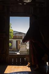 [Myanmar, Niang Shwe] (Paul Bergot) Tags: cat pagoda monk hike monastery shade myanmar inlelake inle kalaw