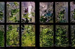 Broken... (brady tuckett) Tags: carlzeissjenaddrpancolar50mmf18 carlzeissjena pancolar50mm pancolar 50mm zeiss bradytuckett brady tuckett window fenster abstract art artistic colors color m42 m42lenses m42mount light lights shadow shadows street streetportrait