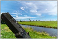 Zaanse Schans overzicht 2 (voorhammr) Tags: gras zon zaanseschans zaandam molens 2016 vakwerk huisjes blauwelucht jolandakraus