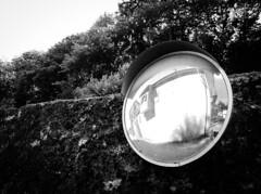 AdobePhotoshopExpress_4f7842fd566642e3838bf895f1c1a000 (Michele Gavazza) Tags: crodo smeglio emo