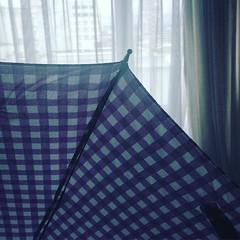 Hoy, en cambio. (carocampalans) Tags: square lluvia bogot squareformat clarendon invierno paraguas morado iphoneography instagramapp uploaded:by=instagram