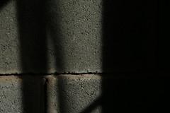 Luces y sombras 2 (flornates) Tags: luz sombra photo foto oneshot one shot