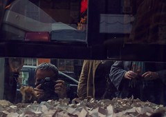 Pet Store Window, Christopher St. (damircc) Tags: selfportrait colorphotography streetphotography