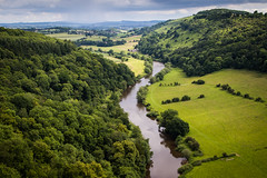 Green and Pleasant (*Hairbear) Tags: uk summer england green woodland river landscape rainy valley lush yat symonds wye anob