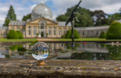 The Great Conservatory Syon Gardens London - Through The Looking Glass by Simon & His Camera (Simon & His Camera) Tags: reflection building tree london nature water glass grass statue gardens architecture landscape pond distorted outdoor orb conservatory sphere dome round yew iconic middlesex brentford crystalball isleworth syon syonpark syonhouse syonhousepark greatconservatory simonandhiscamera