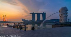 marina bay sunrise (jaywu429) Tags: city sky sun water skyline sunrise landscape singapore asia downtown cityscape sony tokina merlion goldenhour mbs singaporeriver marinabay singaporecity singaporeflyer tokina1628mm sonya7r
