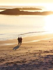 Strandspaziergang (stefandinkel) Tags: sunset sea beach strand meer wasser sonnenuntergang norwegen mitternachtssonne m43 mft olympusomdem1 stefandinkel