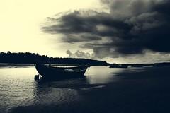 Ominous (Chiradeep.) Tags: sea sky cloud india tree beach water creek forest landscape boat sand noon fishingboat orissa waterscape taalsari