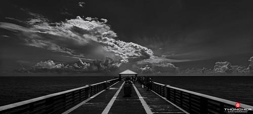 Florida Life: Fisherman's Wharf