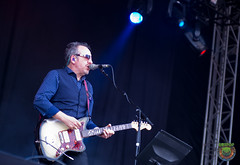 Elvis Costello-52