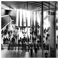 Canary Wharf (Flamenco Sun) Tags: city uk summer urban london june thames britain sunny wharf canary financial cabot uploaded:by=flickrmobile flickriosapp:filter=panda pandafilter