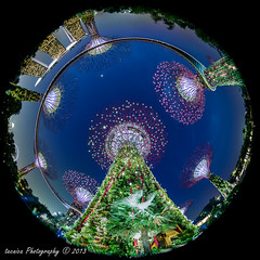 Rhapsody Of Light (t3cnica) Tags: city longexposure trees architecture landscapes twilight singapore cityscapes fisheye bluehour lightshow marinabay exposureblending digitalblending gardensbythebay marinabaysands supertrees