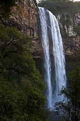 Cascata do Caracol (Gabriel Sperandio) Tags: park parque brazil parco water gua vertical brasil waterfall agua wasser acqua rs parc riograndedosul brasile canela brsil cascata serragacha brazilien cascatadocaracol regiosul