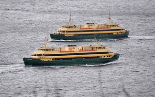 Manly Ferries Narrabeen and Queenscliff cross at Sydney Heads