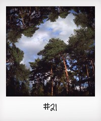 "#DailyPolaroid of 19-10-13 #21 • <a style=""font-size:0.8em;"" href=""http://www.flickr.com/photos/47939785@N05/10435469526/"" target=""_blank"">View on Flickr</a>"