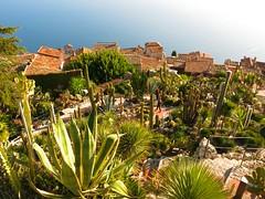 Eze Exotic Garden view towards village_2207 (WWW.AMYLAUGHINGHOUSE.COM) Tags: cactus cotedazur riviera eze frenchriviera exoticgardens exoticgarden alpesmaritimesfrance