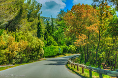On the road, Bouches-du-Rhne, Provence-Alpes-Cte d'Azur, France (Stewart Leiwakabessy) Tags: travel flowers trees summer sky plants sun holiday france tree cars car sunshine clouds landscape bomen frankreich highway holidays driving exterior cloudy location arbres stewart shade freeway week frankrijk francia arbre baum hdr highdynamicrange blending multipleexposures d10 camions bouchesdurhne leiwakabessy stewartleiwakabessy photomatix bracketed tonemapped provencealpesctedazur routenational blendingtechnique provencealpesctedazurpaca france2013 provence2013 fronkraisch stewartleiwakabessy2013