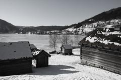 Sunnfjord Museum  2013 (dese) Tags: schnee winter blackandwhite lake snow blancoynegro norway museum photo blackwhite vinter foto zwartwit norwegen bn noruega february scandinavia sn norvegia biancoenero sn sne snijeg frde sneg noreg fjordane dese skandinavia svartvitt sognogfjordane sunnfjord scandinavie 2013 svartkvitt february27  movika schwarzweisfotografie desefoto sunnfjordmuseum sognogfjordanefylke
