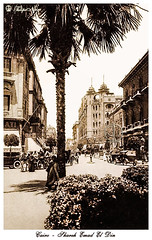 Emad El Din Street - Cairo In 1928 (Tulipe Noire) Tags: africa street 1920s building postcard egypt middleeast cairo bryan egyptian 1928 davies emad eldin
