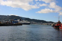 Bluebridge, Wellington 24-01-2009 19-41-50 (Mark in New Zealand) Tags: newzealand wellington northisland