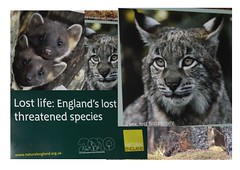 Natural England publication (BSCG (Badenoch and Strathspey Conservation Group)) Tags: