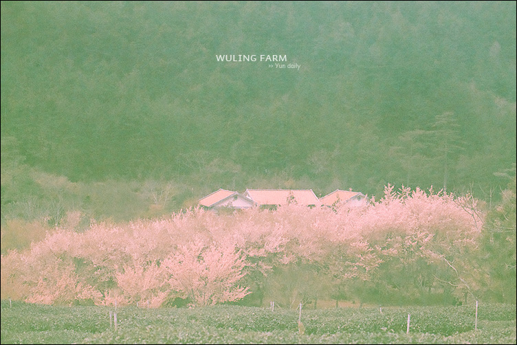 2013 Wuling farm@film