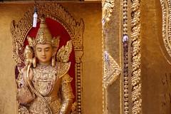 "yangon_017 (ppana) Tags: hti lake"" palace"" ""golden rock"" tan"" pagoda"" an"" ""mrauk u"" yo"" ""buddha ""shwedagon ""buddha"" footprint"" ""victoria"" ""yangon"" ""amarapura"" ""myanmar"" ""burmar"" ""mingalaba"" ""pegu"" ""shwethalyaung"" ""kyaikpun"" reclining"" ""kyaikhtiyo"" ""kyaikpawlaw"" ""shwemawdaw"" ""novice"" ""kanbawzathadi"" ""rangoon"" ""bago"" ""kyaik ""than lyin"" ""hpa ""mawlamyine"" ""kyauk ""pathein"" ""thandwe"" ""ngapali"" ""kalaw"" ""popa"" ""heho"" ""inle ""taunggyi"" ""bagan"" ""sittwe"" ""saggaing"" ""mingun"""
