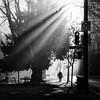 Hamilton St. (. Jianwei .) Tags: city light shadow urban silhouette backlight vancouver downtown sony gastown 2014 hamiltonst jianwei kemily