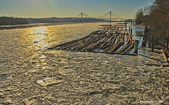 Ice on the Fraser (Pocoken) Tags: bridge ice port river log low 7 arctic coquitlam fraser feb portmann booms 2014 outflow tempratures