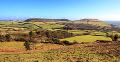 Panorama of the Dorset landscape from Chardown Hill towards Langdon Hill and Golden Cap (Keith now in Wiltshire) Tags: uk england panorama downs landscape sunny wideangle landmark hills coastal dorset fields agricultural goldencap highest southdorsetdowns farmng langdonhill chardownhill mygearandme mygearandmepremium mygearandmebronze mygearandmesilver mygearandmegold