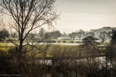 A chilly start to the day (Andy Hough Photography) Tags: morning trees mis