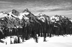 The Tatoosh (Crest Pictures) Tags: winter snowshoe tatoosh mazamaridge thecastle mtrainiernationalpark pinnaclepeak plummerpeak denmanpeak tahooshrange